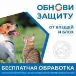 """Акция в магазине """"4 лапы"""" Рязань"""