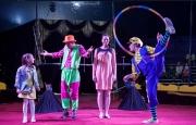 Цирк-шапито «Алле» в Рязани!
