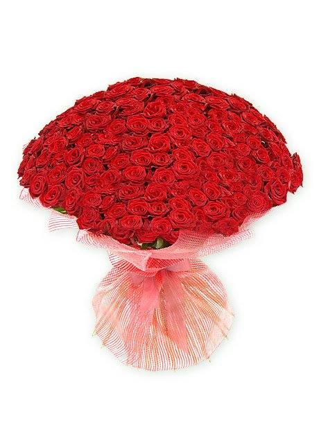 101 роза, город Рязань
