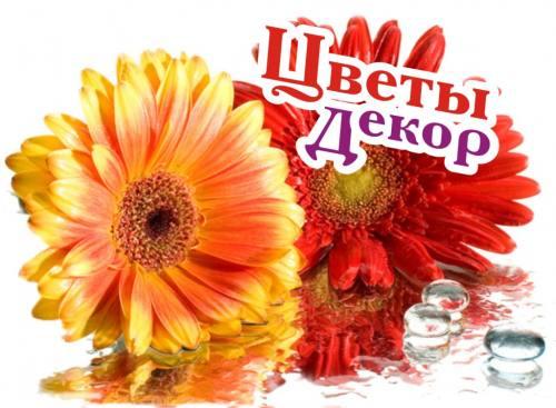 Бесплатная доставка цветов в Рязани, город Рязань