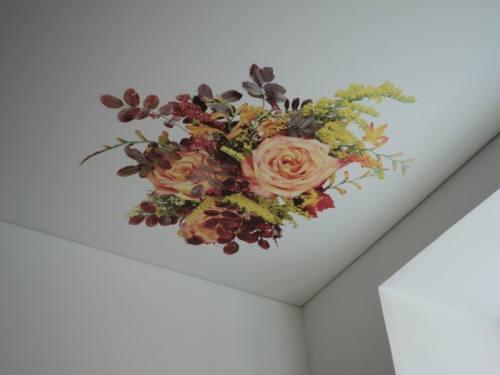 Натяжные потолки с элементами фотопечати, город Рязань