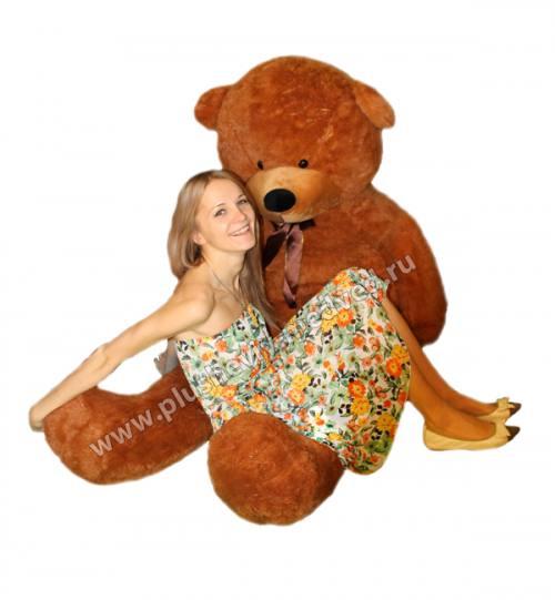 Большой шоколадный плюшевый медведь от 1.2 до 2 метров!, город Рязань
