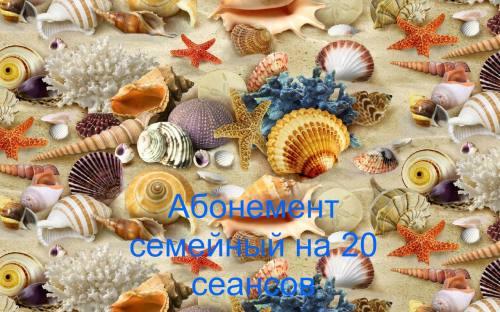 Абонемент семейный 20 сеансов, город Рязань