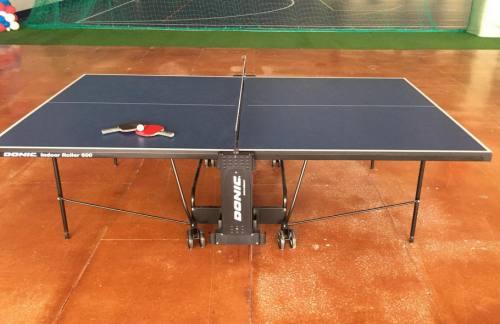 Аренда столов для настольного тенниса, город Рязань