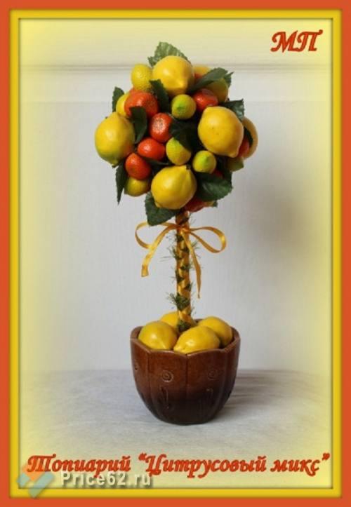 Топиарии - деревья счастья, город Рязань