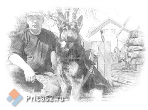 Профессиональная дрессировка собак всех пород, город Рязань