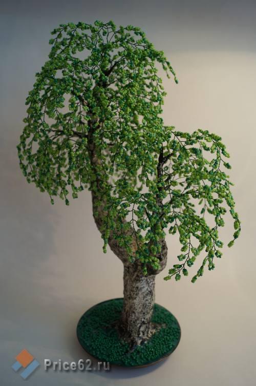 Бисерное дерево, город Рязань