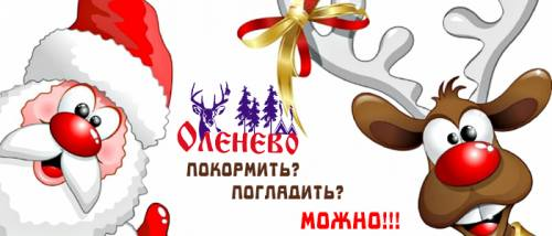 Анимационная программа в Оленево, город Рязань